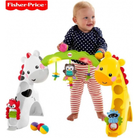 Fisher Price Newborn to Toddler Play Gym, Multi