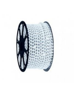 100m Roll LED Double Strips Branca